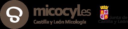 Micocyl