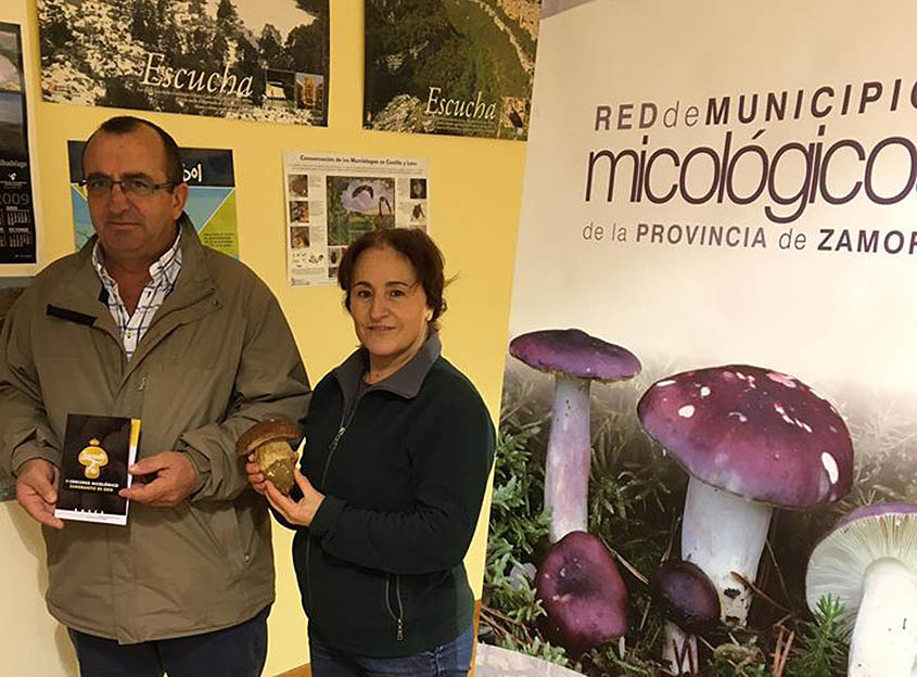 Celebrado el  II Concurso Micológico 'Zamoranito de Oro' (Zamora)